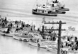 [Fishing boats decorated for the visit of King George VI and Queen Elizabeth]