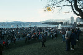 Crowd on the beach during Polar Bear Swim