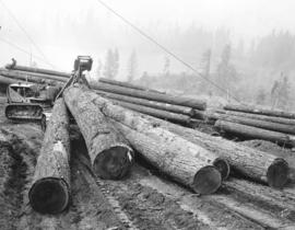 B.S.W. [Boedel, Welch and Stewart Company logging near Great Central Lake, Vancouver Island]