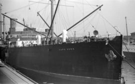 """Cape York"" [at dock]"