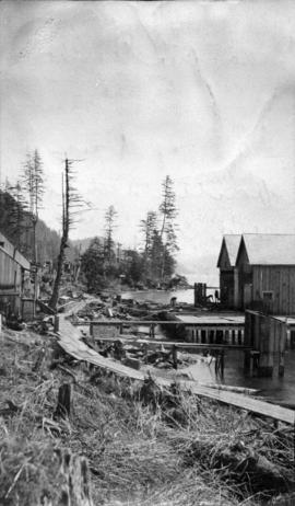 North Pacific Cannery [showing half of the mess house and two new Japanese houses]