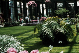 Gardens - United States : Longwood Gardens Conservatory