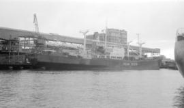 M.S. Italian Reefer [at dock]