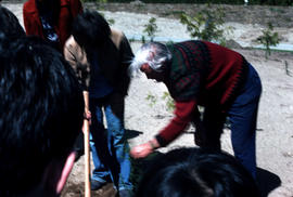 Events : arbor day, Harry demonstrating tree planting
