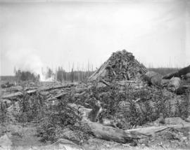 [A pile of stumps from land clearing in Kerrisdale]
