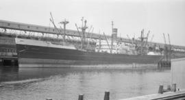 S.S. Abbedyk [at dock]