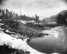 Crow's Nest Pass Lumber Co. logs in Bull River, B.C.