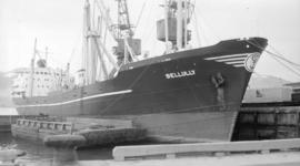 M.S. Bellully [at dock]