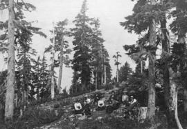 [Group on top of Grouse Mountain]
