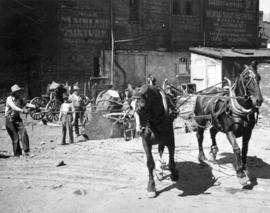 [Removing stump that survived the Great Fire near C.P.R. right of way by Cordova and Carrall Stre...