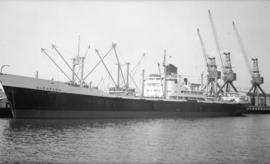 M.S. Glenpark [at dock]