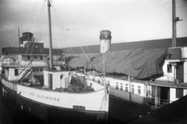 "[""Lady Alexandra"" at Union Steamship dock]"