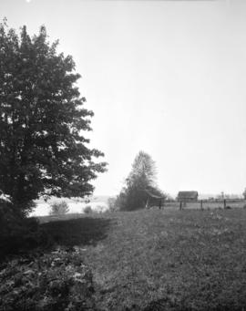 [View of trees and farm buildings near the Fraser River]