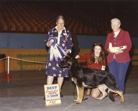 Best Canadian Bred Puppy in Show award being presented at 1975 P.N.E. All-Breed Dog Show [German ...