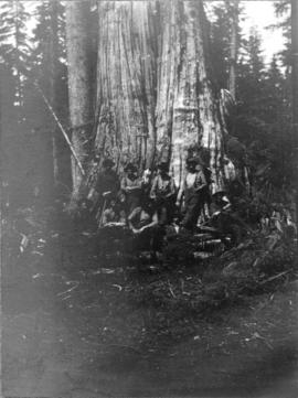 [A group of men in front of a huge tree]