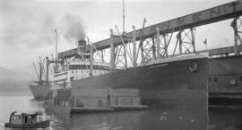 S.S. Harry Luckenbach [at Canadian Government elevator dock]