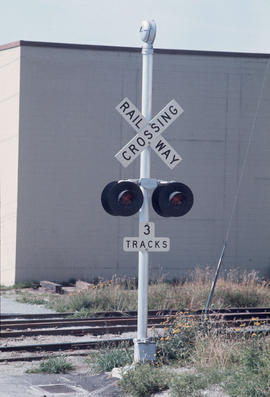 Miscellaneous [37 of 130]