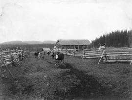 [A pioneer ranch in the Bulkley Valley]