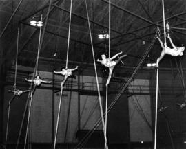 1965 Aerialovelies : [acrobats performing in aerial circus act]
