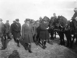[Inspection of the horse transport of a Canadian battalion]