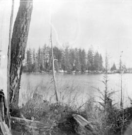 [View of waterfront dwellings on Deadman's Island from Stanley Park]