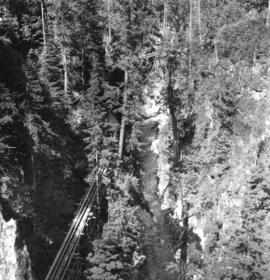 [View of Capilano Canyon close to the Canyon View Hotel]