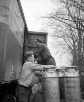 [Men loading milk urns into truck]