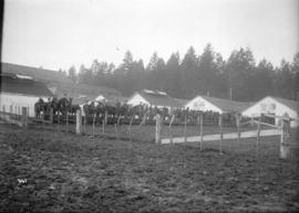 85th Battalion watering horses