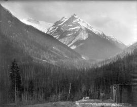 Loop and Ross Peak, from showshed No. 19, Glacier, B.C.
