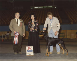 Best in Show award being presented at 1976 P.N.E. All-Breed Dog Show [Doberman Pinscher]