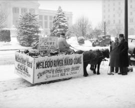 Shetland ponies and wagon [filled with McLeod River Hard Coal from Alberta in front of the court ...