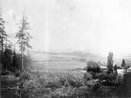 [View of Fitzgerald McCleery's orchard and farm lands - D.L. 315]