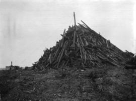 [Pile of logs from clearing land]