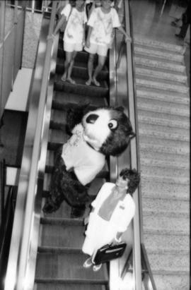 Tillicum and unidentified woman ride an airport escalator