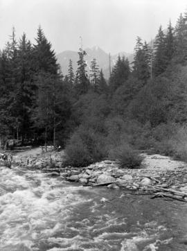 Crown Mountain from Japanese Bridge over Capilano Canyon
