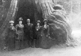 [Mrs. Peebles, Alice M. Grant, George Grant and others in front of the Hollow Tree]