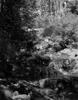 [Creek running over rocks on Bowen Island]