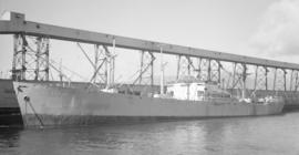 S.S. Aliakmon [at dock]