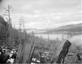 [View from a] Pacific Mills [logging site on the] Queen Charlotte Islands
