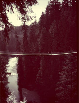 Suspension Bridge, Capilano Canyon