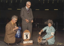 Group five [Toy Group: Yorkshire Terrier] award being presented at 1975 P.N.E. All-Breed Dog Show