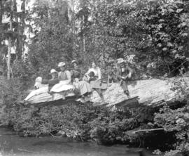 [Men and women with dogs seated on log for picnic]