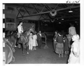 Horse, rider, and crowd in Livestock building during 1956 P.N.E. Horse Show