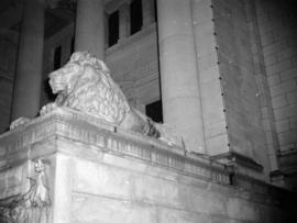[Lion statue on the courthouse steps]