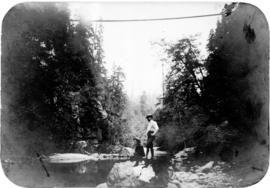 [View of suspension bridge from Capilano Creek]