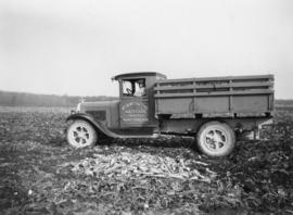 Truck hauling beets from the B.S. Bentley farm