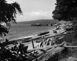 [View of the beach and dock at Selma Park]