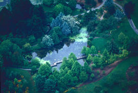 Historical : aerial shot, Cypress Pond
