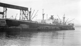 S.S. Panormus [at dock, with lumber-filled barges alongside]