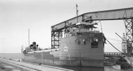 M.S. Cement Carrier [Canada Cement Transport Ltd. at dock]